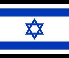 תוצאת תמונה עבור דגל ישראל 69